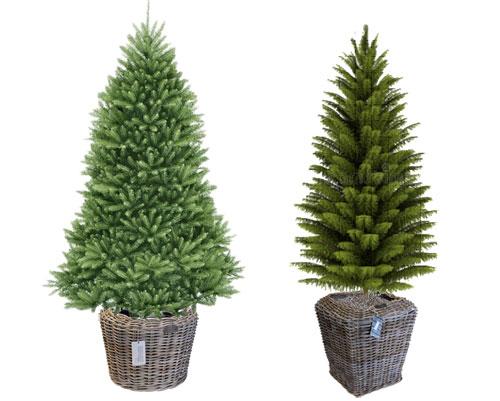 Xmas Tree Planters
