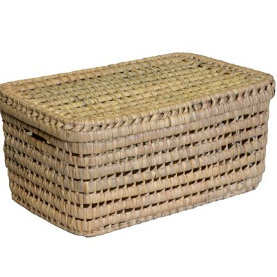 03/VNT4025 Lidded Palm Storage Box